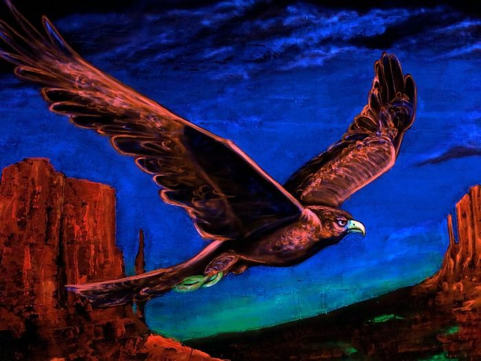 Eagle - Bird Eagle Fluorescent Colors Graffiti Wallart Fluorescent Light Graffiti Schwarzlicht  One Animal Animal Themes Animal Animal Wildlife Animals In The Wild Nature No People Blue Bird Close-up Animal Body Part