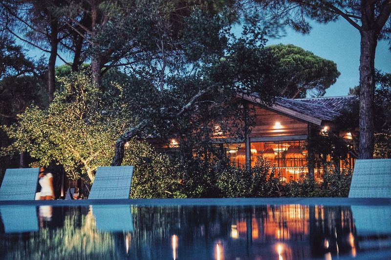 Tree Illuminated Night Outdoors Branch Water Swimming Pool Architecture Nature Growth Built Structure Beauty In Nature No People Building Exterior