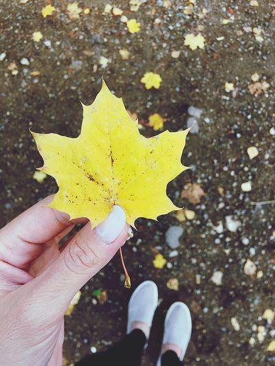 Это все, что останется после меня..» настроение осень Autumn First Eyeem Photo