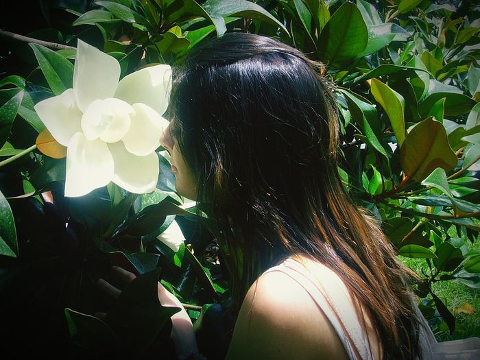 Italy Milan Milano Flowers SUMMER BREAK Blossom Mobile Photography