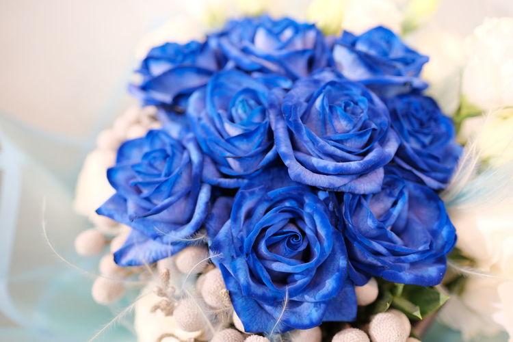Close-up of blue rose bouquet