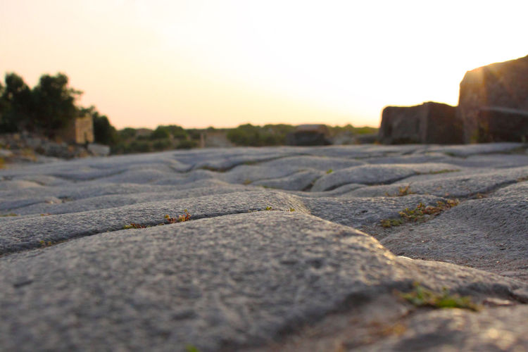 Gadara.Cobblestones 2010 Biblical Places Close-up Gedara Jordan Roman History Roman Road Surface Level Um Qais
