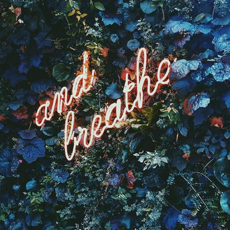 Just breathe EyeEm Selects #sign #neonsign #Amsterdam  #Hotel Go Higher Summer Road Tripping The Traveler - 2018 EyeEm Awards The Creative - 2018 EyeEm Awards The Street Photographer - 2018 EyeEm Awards EyeEmNewHere