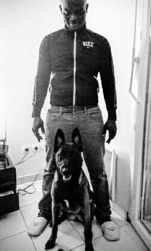 JustMe With My Dog ^^ Taking Photos Championnes Toute Catégorie @suiiiiivre To Be Continued...