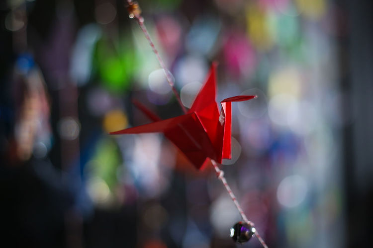 Close-up of red origami crane on string against abstract background
