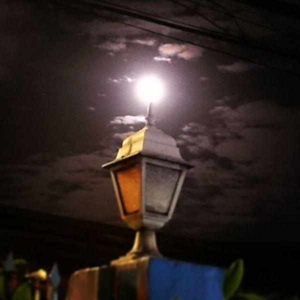 Staringatthemoon Night Moon