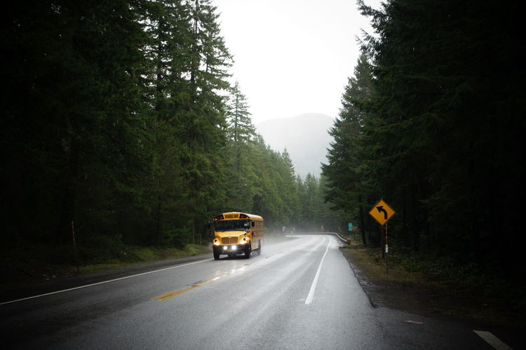 View Of School Bus Driving Along Treelined Road
