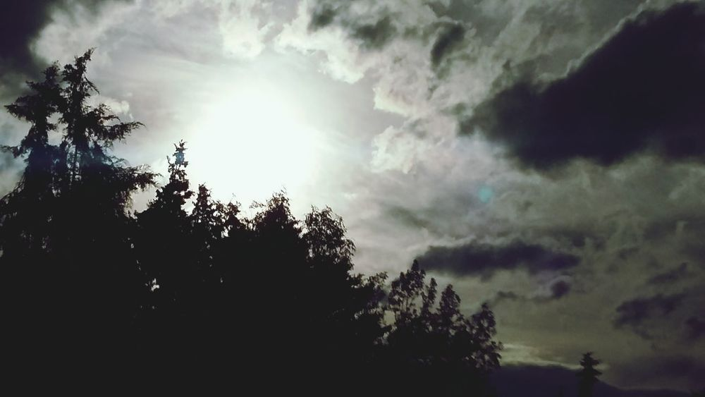 Tardemaravilhosa Nuvesdealgodon Lindo