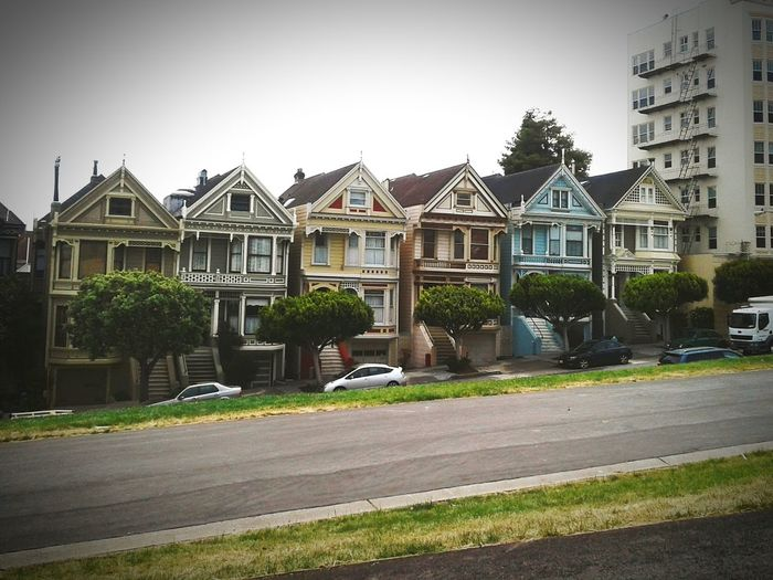 This group of houses is known as the Painted Ladies, these Victorian style homes are featured in over 70 movies & 30 television shows including the intro to Full House Outdoors City Architecture No People Painted Ladies San Francisco San Francisco Personal Perspective OneLove Nature Photography Travellerslife Travelamerica Traveling Let's Go. Together. Travel Photography Gypsy Guidance City Muchlove Flowers, Nature And Beauty Awakened Spirituality Sommergefühle AwakeNow Architecture Nature