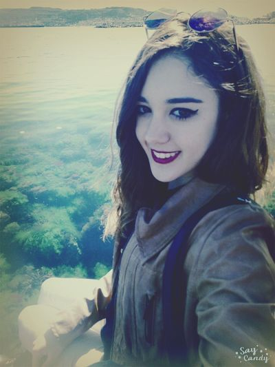 Enjoying The Sights Fish Sea