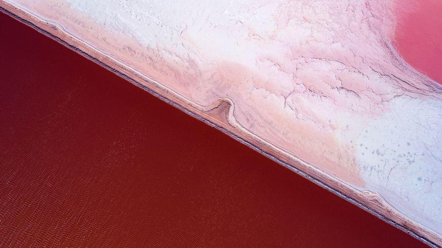 High angle view of pink liquid