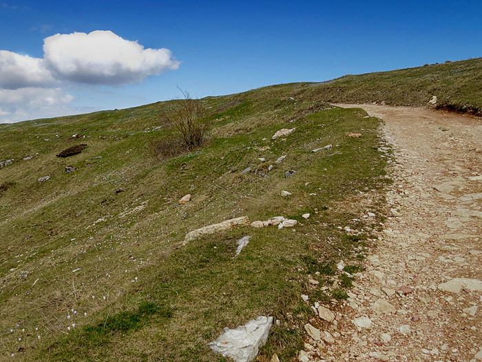 Blue Sky Diminishing Perspective Edge Landscape_photography No People On The Way Outdoors Path In Nature Simple Beauty Solitary Place Sunny Day The Way Forward Trail Tranquil Scene Uphill Walking