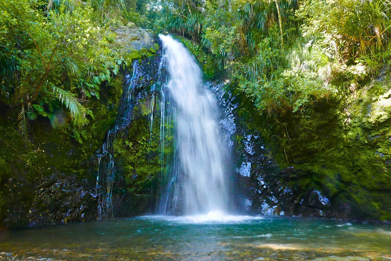 WATERFALL IN FOREST