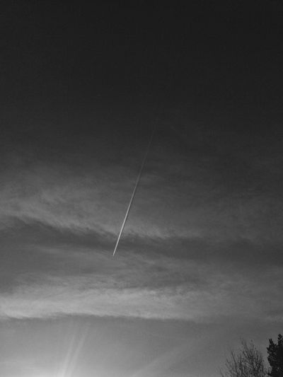 The aircraft adventure🧚🏾‍♂️ Vapor Trail Scenics Sky No People LINE Outdoors Aircraft Monochrome Light Landscape Tree Black E White Photography