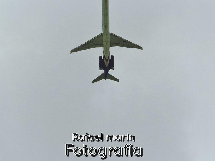 Aeropostal hacia un nuevo rumbo Taking Photos