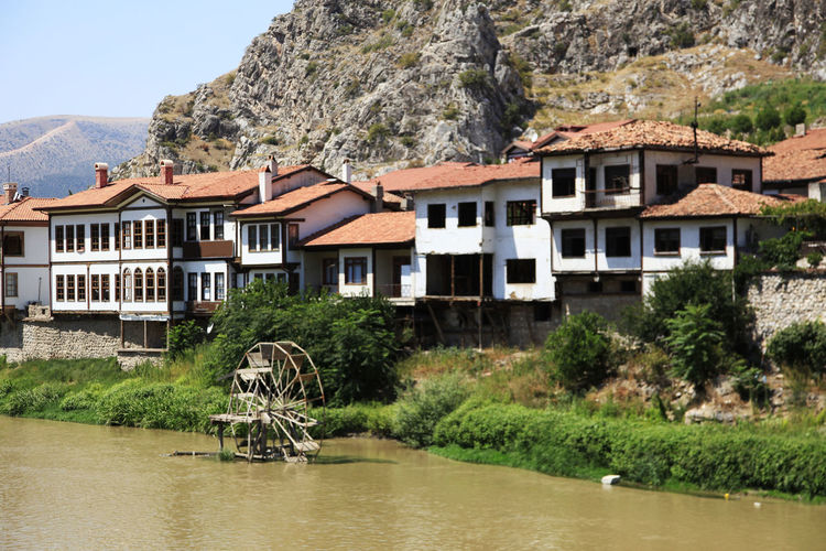 Plants by river and houses against buildings and mountain