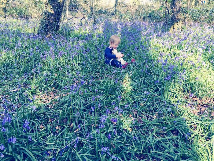 Pixie amid the bluebells Day Outdoors One Person People Nature Pixie Child Childhood Children Photography Bluebells Bluebell Wood WoodLand Forest Photography Forest