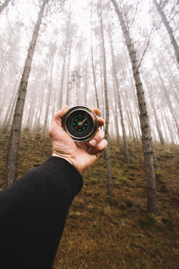 Adult Camera - Photographic Equipment Close-up Day Forest Holding Human Body Part Human Hand Men Nature One Man Only One Person Outdoors People Real People Tree Tree Trunk