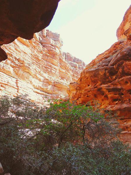 🗻 Hikingadventures Havasupai Arizona Eyeem Travel Grand Canyon Nature The Artsy Lens Mobile Photography Blackberryphoto Ladyphotographerofthemonth The Great Outdoors - 2016 EyeEm Awards