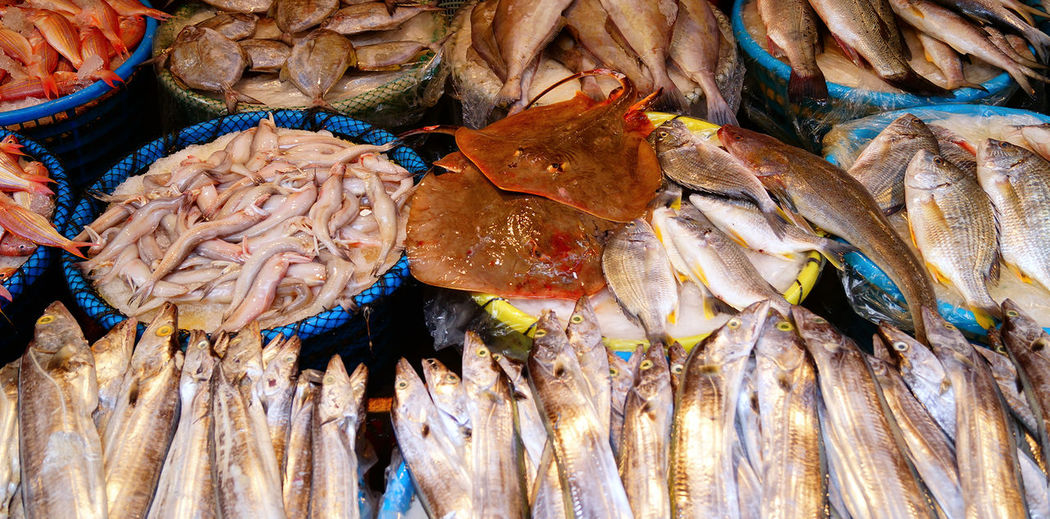 Full frame shot of seafood at street market stall