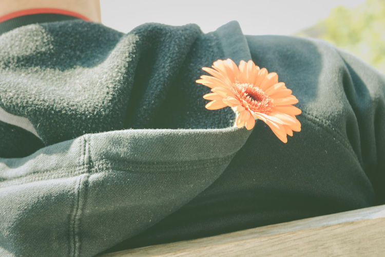 Young guy wearing a jumper keeps a gerbera in a hood Close-up Dark Day Flower Flower Head Focus On Foreground Freshness Gerbera Gerbera Daisy Hood Jumper Jumpers  Man One Person Relax Romantic Spot On Stranger Unusual Young Guy Lieblingsteil
