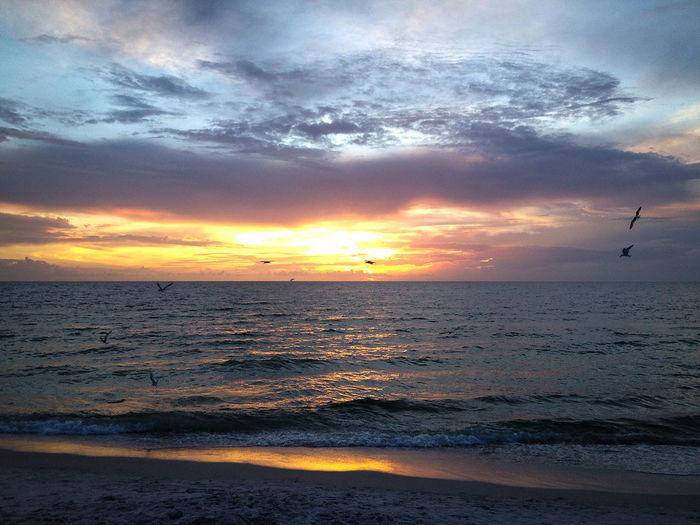Sunset in Naples, Florida. Atmospheric Mood Beach Beach Sunset Beauty In Nature Dramatic Sky Florida Florida Sunset Horizon Over Water Light Majestic Naples Naples Sunset Ocean Sunset  Oceanside Orange Color Outdoors Sea Seascape Sun Sunset Tranquil Scene First Eyeem Photo