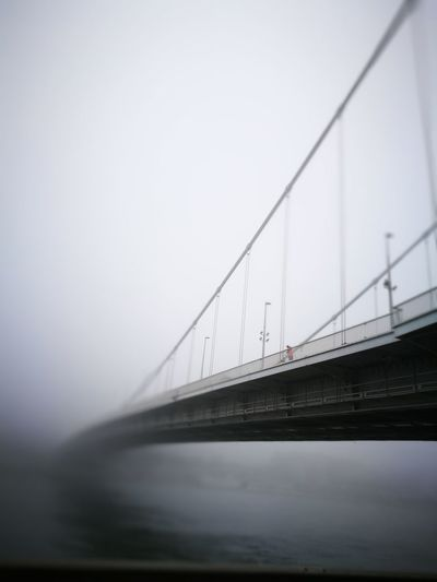 Bridge - Man Made Structure Transportation Water Connection Outdoors No People Architecture Suspension Bridge Nature Erzsébet Híd Elisabeth Bridge Duna Danube Winter Wintertime Fog Foggy Foggy Morning Foggy Day