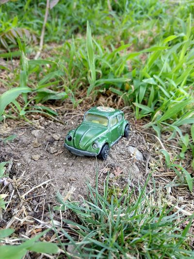 VW Beetle Vintage Cars Vintage Toy Car Streamzoofamily TheVille Nature Beatle Garden Beatle In My Garden Insect Close-up Grass Green Color