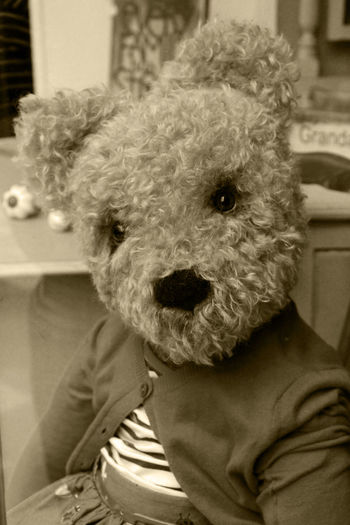 Animal Themes Bear Childhood Childhood Memories Childhood Toys Cuddly Cuddly Toy Memories Of Childhood Memories ❤ Sepia Sepia Photography Teddy Teddy Bear Toy Photography Vintage Photo EyeEmBestPics EyeEm Best Shots EyeEm Gallery Sepia_collection Teddy Bears Teddybear TeddyBears Teddy Bear 🐻 Teddylove EyeEm