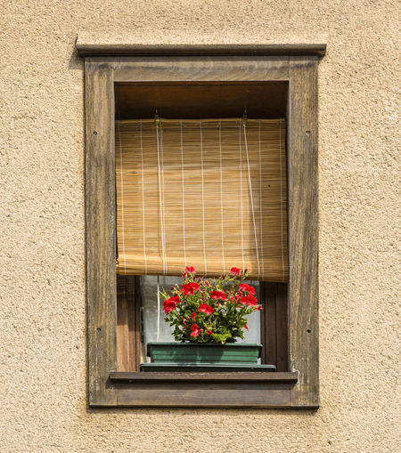 Fancy old wooden window with red flowers Architecture_collection Old Town Old-fashioned Architecture Blinds Building Exterior Detail Flower House No People Old Buildings Old House Window Wooden Blinds Wooden Window
