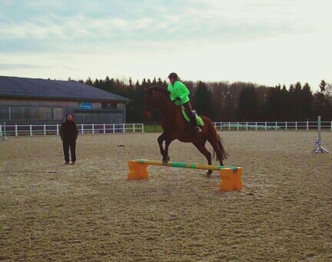 Pferde können dir alles brechen....außer dein Herz! Horse Love Enjoying Life That's Me