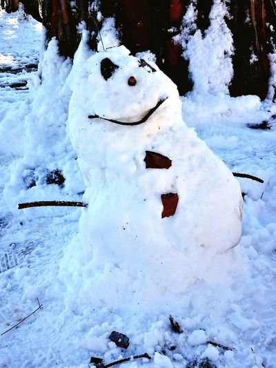 Pupazzo Snow Cold Temperature Winter Day Outdoors Nature Snowman