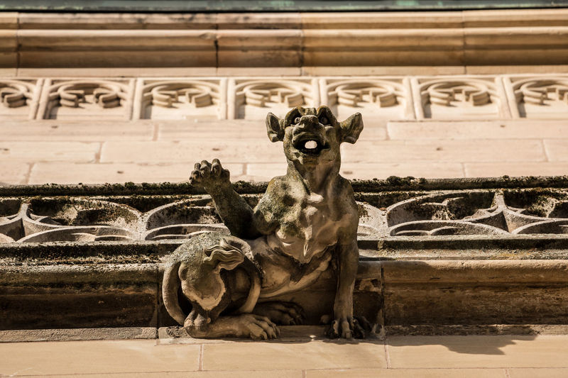 Stone gargoyle on the roof of an old historical building Mammal One Animal Vertebrate Architecture Domestic Domestic Animals No People Pets Dog Canine Portrait Built Structure Day Looking At Camera Sitting Nature