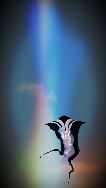 EyeEm Best Edits NEM GoodKarma OpenEditCreativ Turquoise By Motorola Capture The Moment Glitch
