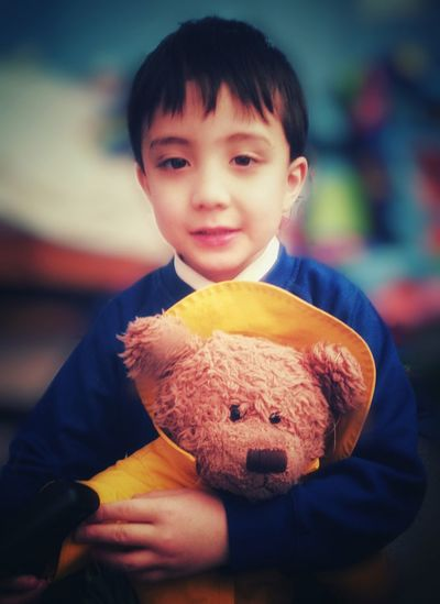 Portrait of a young boy cuddling a teddy bear. 5 Years Old Cuddly Toy Soft Toy Childhood Teddy Bear Boys Stuffed Toy Toy Real People One Person Child Portrait Smiling Indoors  One Boy Only Close-up