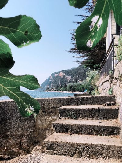 Steps Steps And Staircases Staircase Day Built Structure Green Color Architecture Outdoors No People Nature Building Exterior Sky Lake View Lake Lago Di Garda Gardalake Mediterranean  Summer Summertime Idylic Lovly Place Travel Old Architecture Weathered Leaves