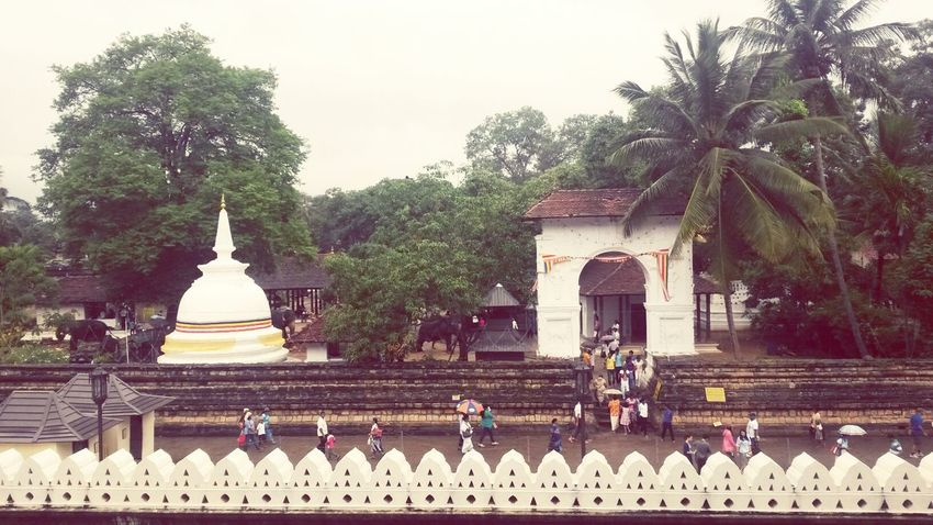Temple View Rainy Day Traveling In Sri Lanka Buddhism