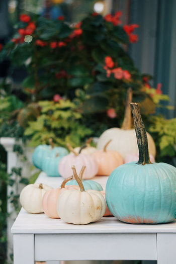 Close-up of multi colored pumpkins on table
