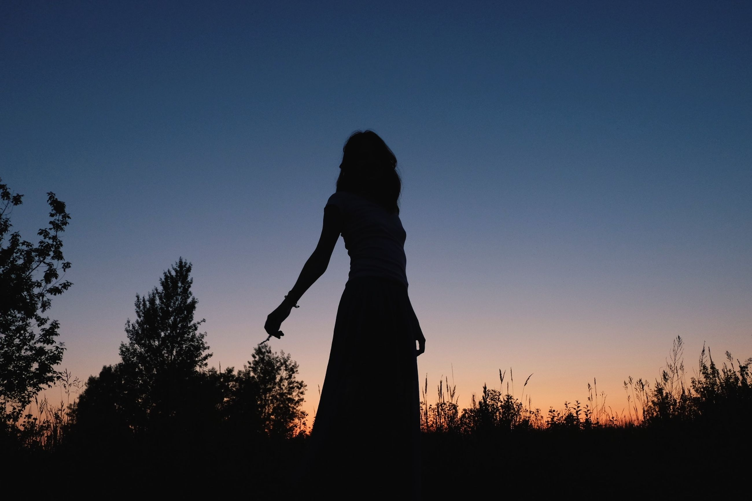 sky, silhouette, one person, real people, standing, lifestyles, plant, sunset, clear sky, women, tree, copy space, nature, tranquility, three quarter length, adult, leisure activity, land, field, hairstyle