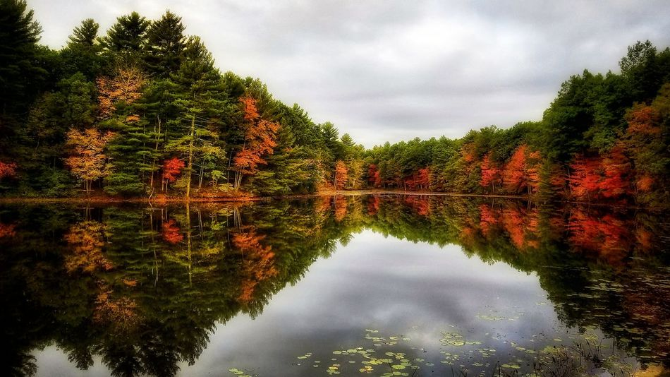 Good morning... 🍂🍁🍂 Reflection Tree Cloud - Sky Water Autumn Lake Change Outdoors Sky Symmetry Leaf No People Day Nature Red Scenics Beauty In Nature EyeEm Best Shots Reflection EyeEm Nature Lover Nature EyeEm Best Shots - Nature Tranquility New England  Beauty In Nature