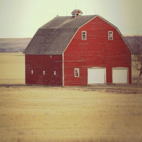 This red barn in Montana. #jj_red #igersmontana #barn Jj  Instagood Igscout Instaaaaah Instagramhub Countrylife Igersmontana Jj_forum Red The_guild Barn Primeshots Photowall Photosfans Photooftheday Gmy GCS Instamillion Gf_daily Jj_red Igers Jj_forum_0489 IGDaily