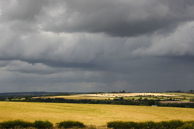 Grey Clouds looming over Harvest-time Farmland Agricultural Land Beauty In Nature Dramatic Sky Farmland Horizon Over Land Landscape Landscape_Collection Nature No People Non Urban Scene Outdoors Overcast Oxfordshire UK Rural Scene Scenics Sky Sky And Clouds The Cotswolds Weather