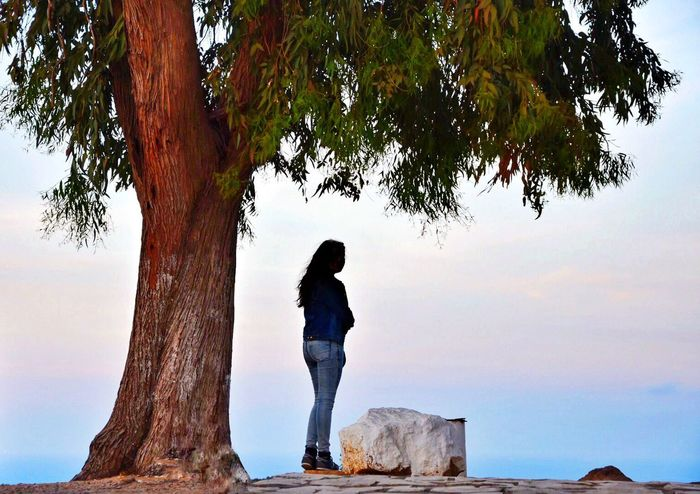 My Favorite Photo Waiting Underthetree Rock Thinking Sunset Sunset Silhouettes Tree Colors Sunsetsky EyeEm Best Shots Sidi Bou Said Nikon Nikonphotography