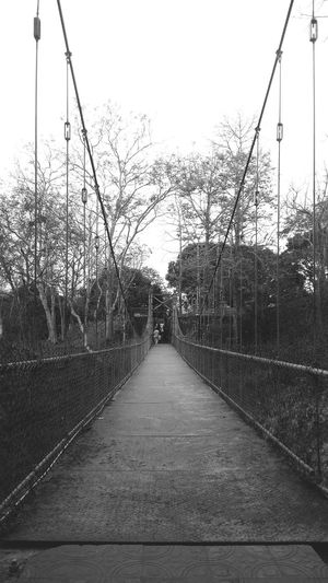 a small metal hanging bridge . Edit EyeEm Best Edits Simple Quiet Love EyeEm Selects Enchanting India Mobilephotography Monochrome Weekend Monochromatic Memories Light And Shadow Monochrome Blackandwhite Shadow Outdoors Minimalism Photography Memories Black And White Detail Water Sky Footbridge Bridge - Man Made Structure Chain Bridge Cable-stayed Bridge Diminishing Perspective Bridge Steel Cable Engineering