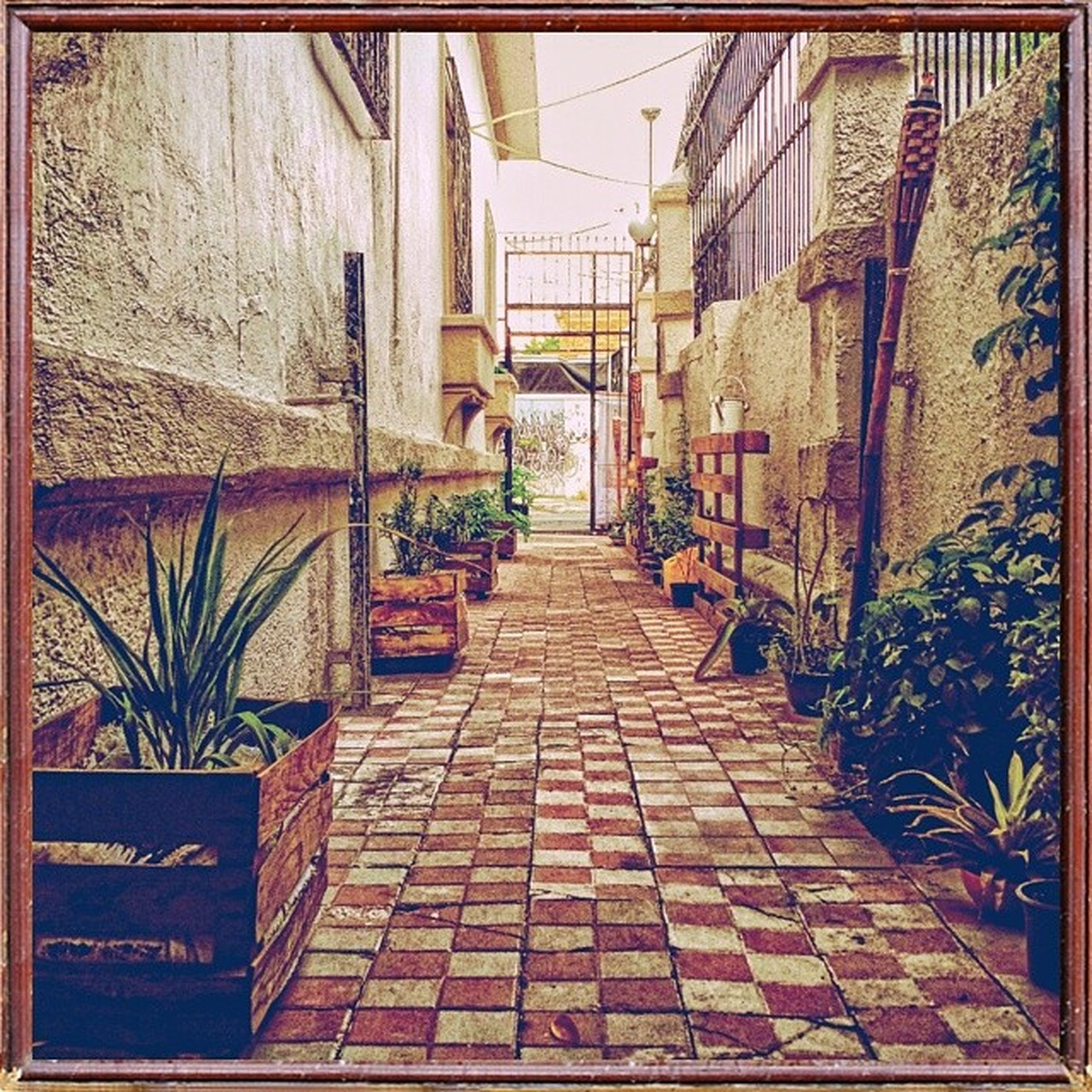 architecture, built structure, building exterior, transfer print, the way forward, auto post production filter, cobblestone, house, wall - building feature, residential structure, building, walkway, narrow, residential building, alley, wall, footpath, diminishing perspective, paving stone, day