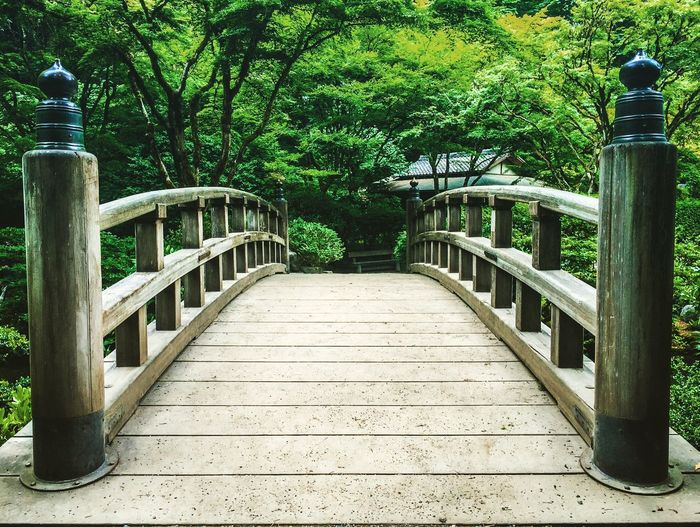 Low angle view of footbridge in park