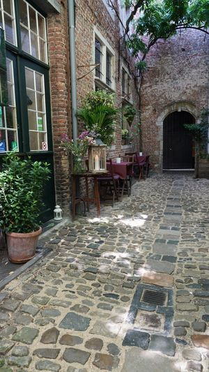 The Vlaeykensgang is a small alley close to the city hall of Antwerp. This small historic alley is a throw-back to the late Middle Ages, a time when many streets weren't wider than a doorway. Antwerp Brick House Tourism Picturesque Place Picturesque Street Picturesque Cobblestone Streets Cityscape Old Houses Tourist Destination Historical Site Historical Place Architecture Built Structure Building Exterior Building Plant Day No People Cobblestone Street City House Footpath Wall Window Outdoors Footpath Architecture