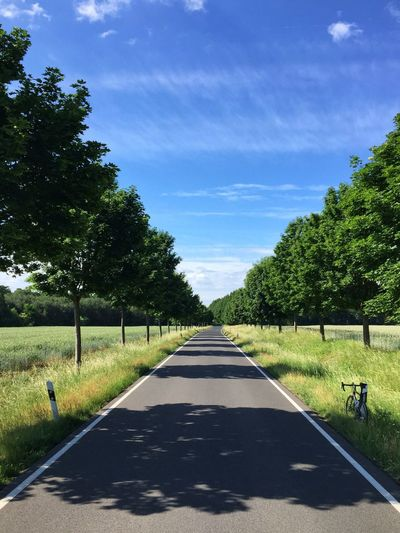 Empty road amidst trees and grass on field during sunny day