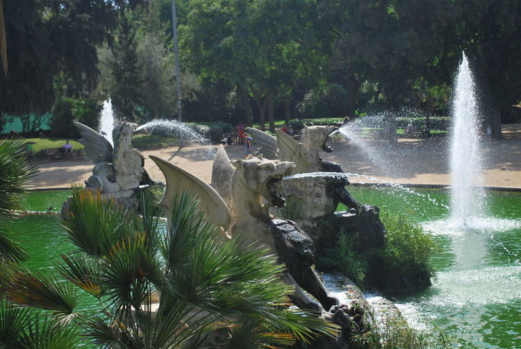 Barcelona Barcelona, Spain Beauty In Nature Catalonia Catalunya Day Fountain Growth Motion Nature No People Outdoor Outdoor Photography Outdoors Outdoors Photograpghy  Outside Outside Photography Park Scenics SPAIN Tree Water Waterfall