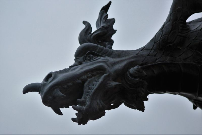 Clear Sky Close-up Day Dragon Dragon Scupture Gargoyle Low Angle View No People Outdoors Sculpture Sky Statue